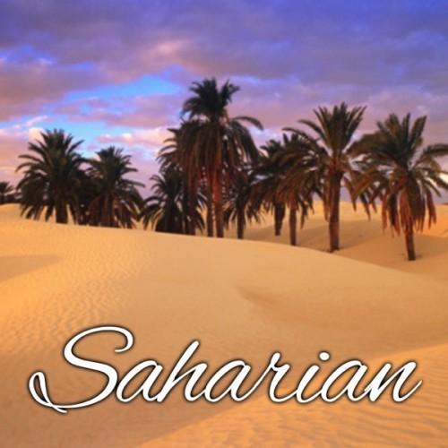 SAHARIAN - ALFALIQUID-DLUO DÉPASSÉE