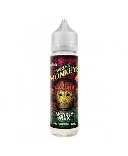 e-liquide twelve monkeys hakuna pas cher